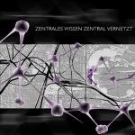 Anuschah Behzadi – ZENTRALES WISSEN ZENTRAL VERNETZT
